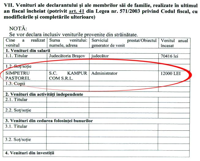 SÎMPETRU - declarație de avere - detaliu venit soț - 2013